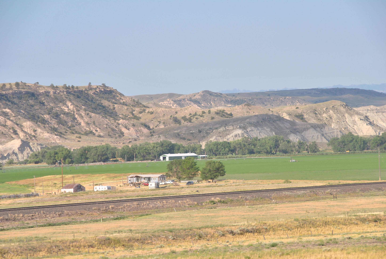 22JUL_WyomingCottonwoods2