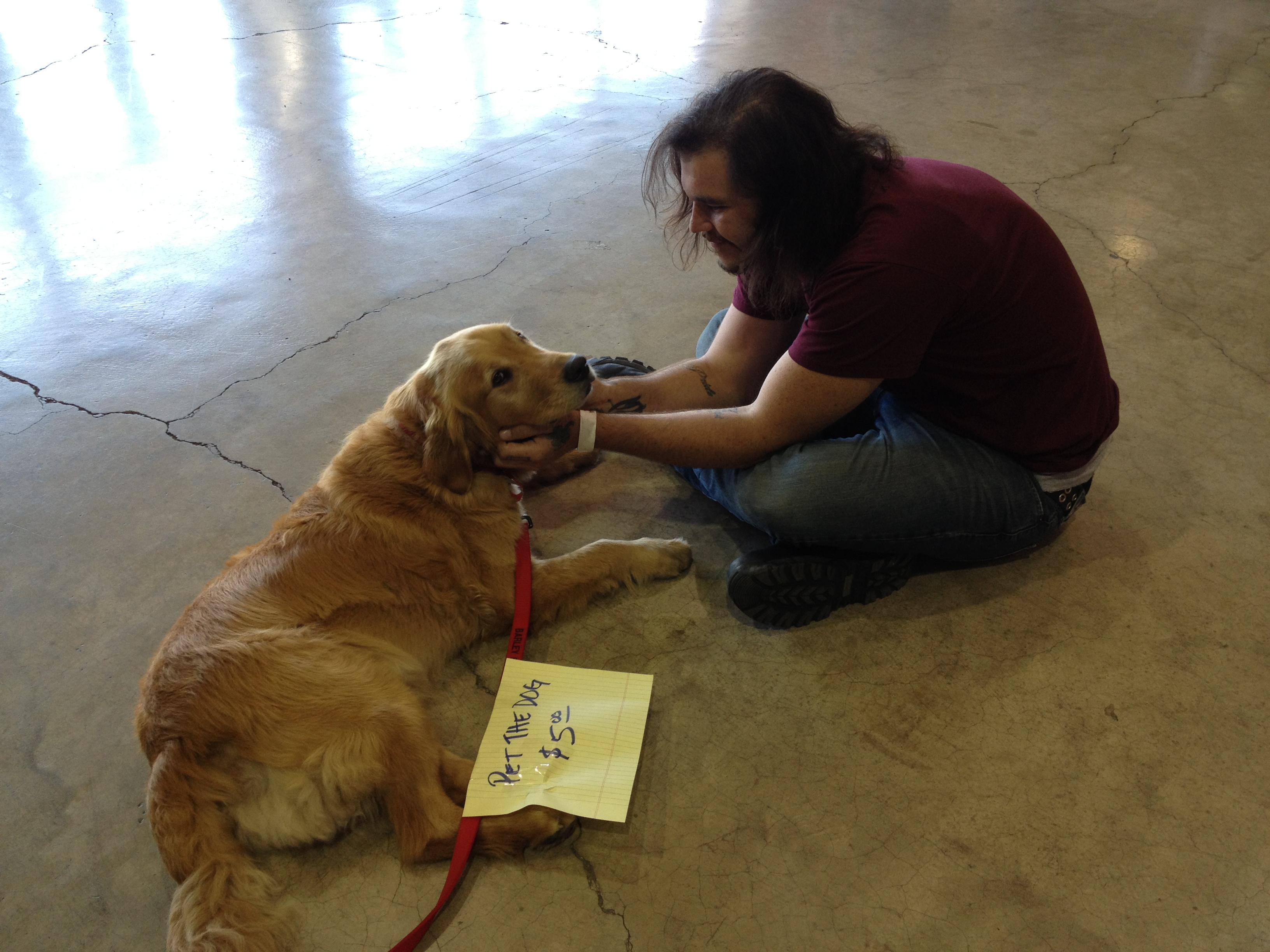 Several rally goers needed dog fixes
