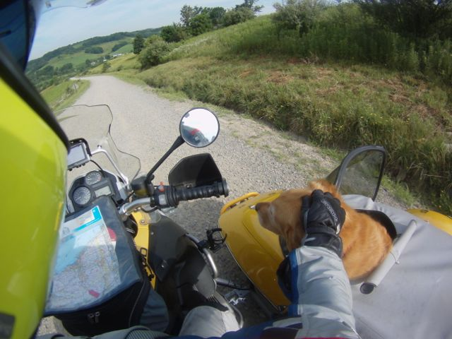 Such a good riding buddy!
