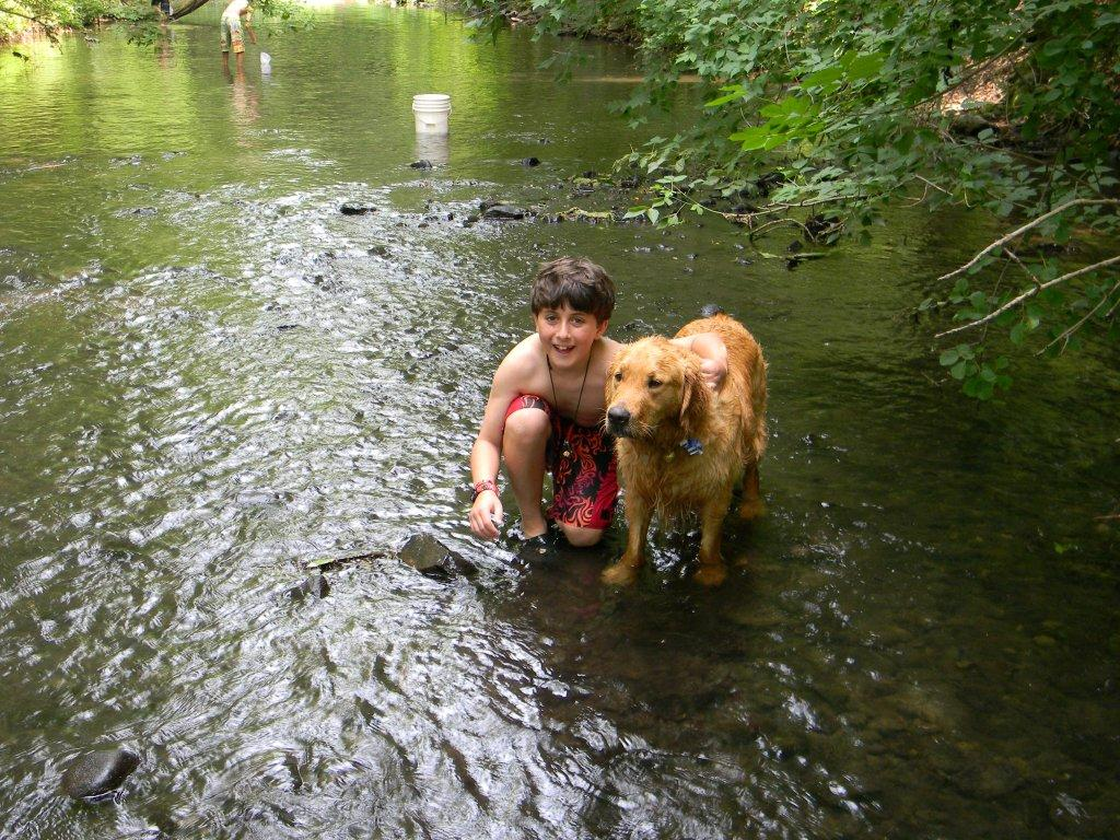 Barley and Trey cooling off in the river