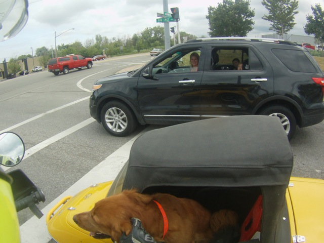 Traveling with a dog spreads good cheer!