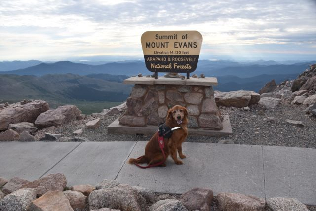 Tulliver hamming for the camera at the summit